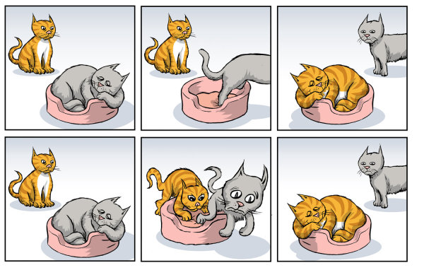 SN1 vs SN2 Mechanism Explained With Cats