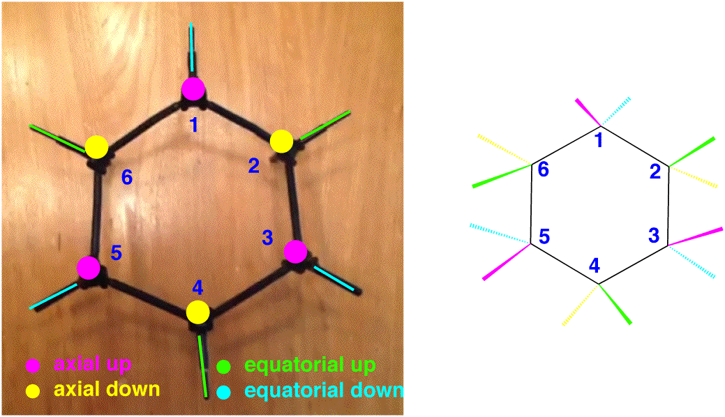 top-down-cyclohexane