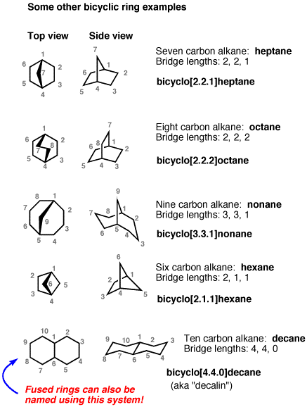 5-other bicyclic rings