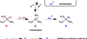 The SN1, E1, and Alkene Addition Reactions All Pass Through A Carbocation Intermediate