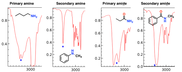 1-amines-and-amides