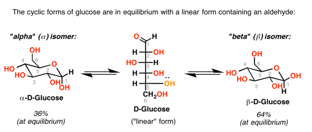 "Mutarotation of D-glucose: equilibrium between alpha-D-glucose and beta-D-glucose passes through an intermediate ""linear"" form of D-glucose."