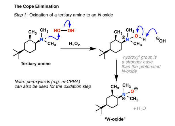 Cope elimination formation of n oxide with hydrogen peroxide