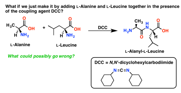 unsuccessful attempt to synthesize dipeptide without protection of amino acids