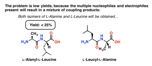 mixture of dipeptides obtained by attempting peptide synthesis without protecting amino acids